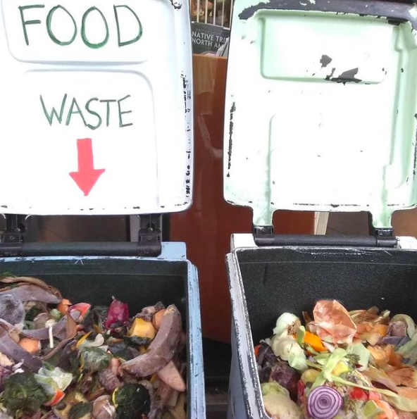 Picture of two open compost bins